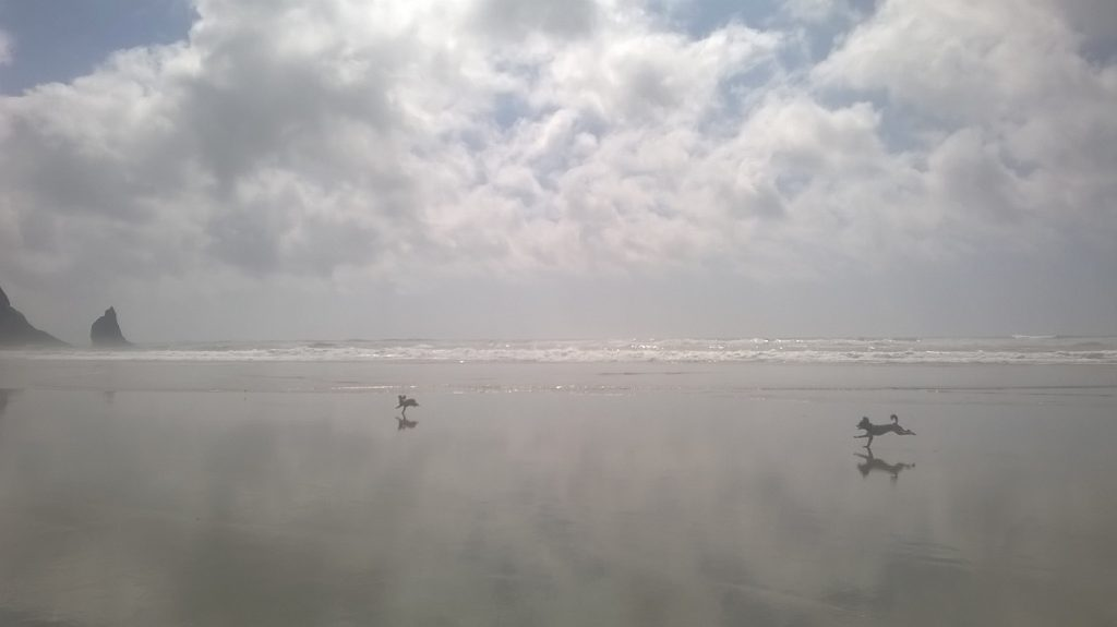cannon-beach