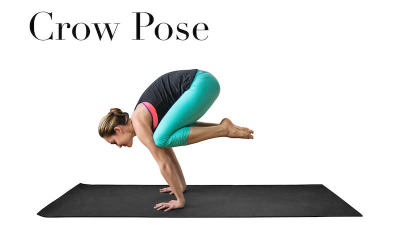 How To Do Crow Pose 3 Modifications Bad Yogi Blog