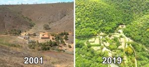 Awesome Person(s) of the Week: Man and His Wife Plant Over 2 Million Trees to Restore Forest_Bad Yogi