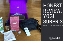 yogisurprise blog review feat